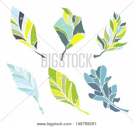 Vector leaves objects set on white background. Sketch style