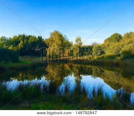 Small lake in GERMANY / NRW / RHINELAND /  WACHTENDONK in summer