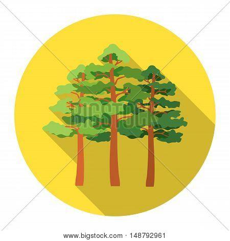Pine vector illustration icon in flat design