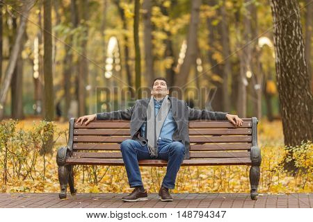 portrait of young man in gray coat and jeans sitting on bench in alley in autumn park, hands on back, looking up