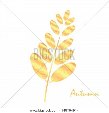 Autumn Leaf Design Element
