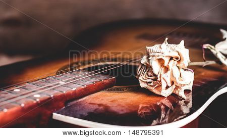 dry rose flower on the strings of an old dusty guitar