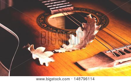 Two dry autumn leaves on the guitar strings