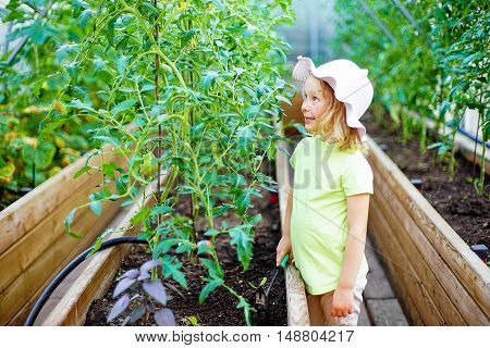 Gardening - little girl taking care of the plants in the greenhouse in a vegetable garden. Kids are playing. Little helpers.