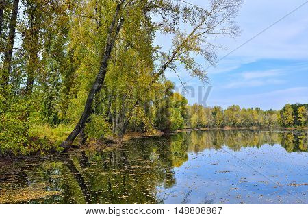 Picturesque autumn landscape on the lakeside a mirror reflection of bright trees and bushes in still water
