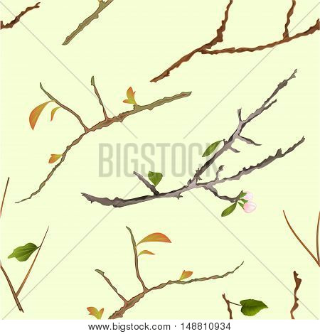 Seamless texture branch various Sprigs twig tree and bush vector illustration