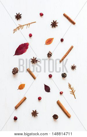 autumn composition with autumn leaves, cinnamon sticks, anise stars, cones and dried cranberry, top view, flat lay