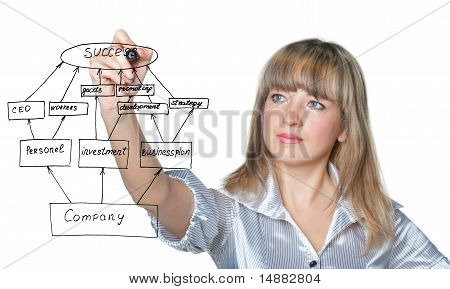 The Business Woman Draws Felt Pen Business Plan On Screen