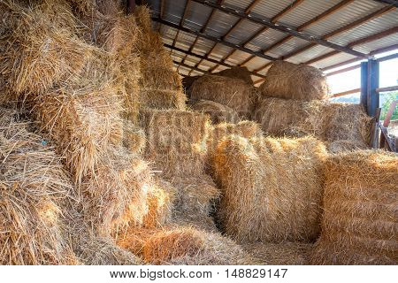 Hay stacks and bales at farm haylof hangar storage