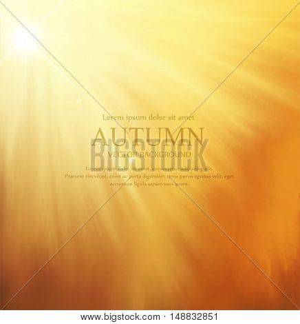 vector orange background with sun rays