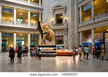 WASHINGTON D.C.,USA - AUGUST 11,2016 : Visitors at the Main Hall of the National Museum of Natural History in Washington D.C.