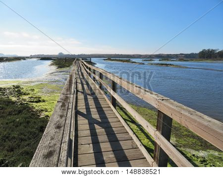Elkhorn Sough near Moss Landing, CA is an important part of the Monterey Bay ecosystem.