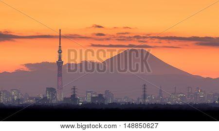 Tokyo night view with Mt.Fuji and Tokyo skytree landmark