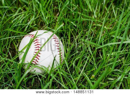 Baseball resting on green grass.  Athletic sport using ball played for recreational fun and competition.