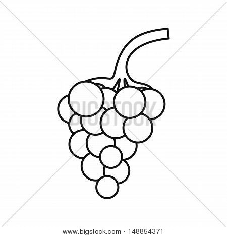 Bunch of grapes icon in outline style isolated on white background. Fruit symbol vector illustration