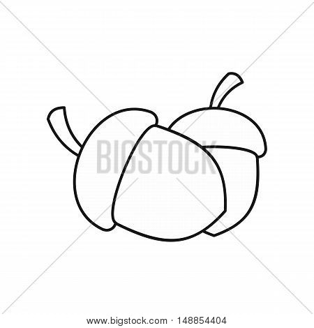 Two acorn icon in outline style isolated on white background. Plant symbol vector illustration