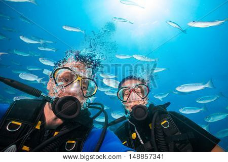 Couple of scuba divers looking at camera underwater. Flock of fish on background