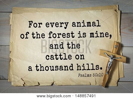 TOP-1000.  Bible verses from Psalms.For every animal of the forest is mine, and the cattle on a thousand hills.