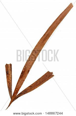 Isolated line multicolor arrows collection of elements application of dried pressing long stiff brown iris leaves. set for your design on a white background