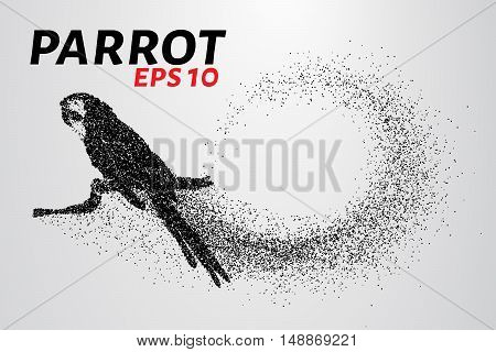 Parrot of the particles. Parrot sitting on a branch made up of little circles.