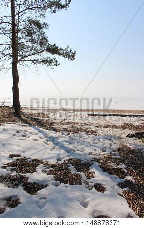 Snow of sea and sandy beach