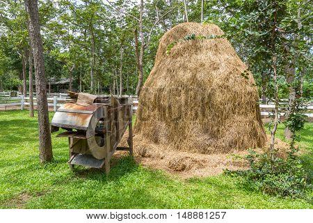 Dry straw bales on farmland in Thailand