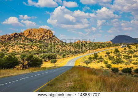 Low trees and autumn yellow grass. The asphalt road in Namibia in the savannah