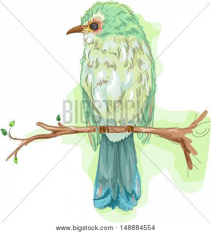 Animal Illustration Featuring a Colorful Bird Perched on a Tree Branch