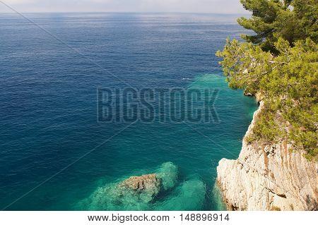 The Threat To Rocky Shore,horizon, Rocks, Flora And Fauna