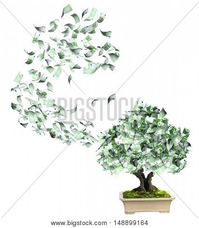 Money tree with euro banknotes. Isolated on white background. 3d render