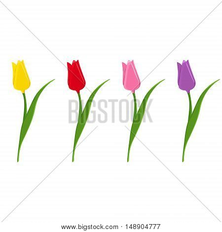 Set of vector tulips. Flat icons of red pink yellow and purple tulips. Spring flowers.