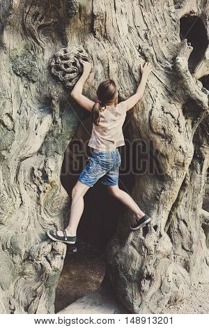 Girl is climbing on tree. Active leisure of skilful female child outdoors. Very big old tree in park.
