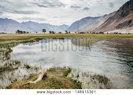 Mountain in the Nubra river Valley, Hunder, India