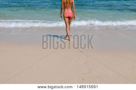 Rear view of young woman in bikini walking into sea water. Young female in swimsuit on beach going for swim. Cropped shot.