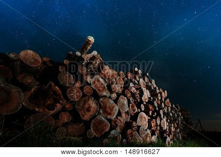 Tree trunks stacked against the backdrop of night sky.
