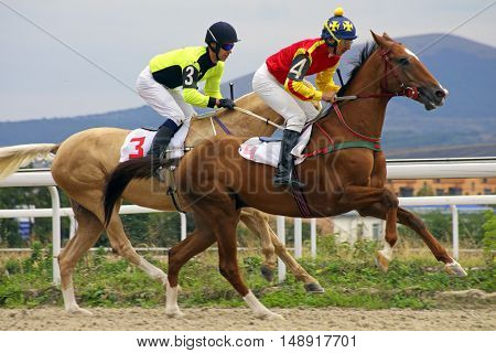 Horse race for the traditional prize Zakritia in Pyatigorsk,the largest in Russia.
