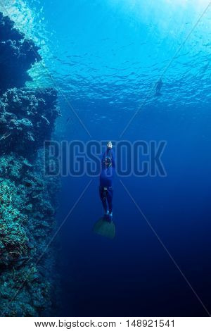 Free diver ascending along the coral reef wall in the tropical sea