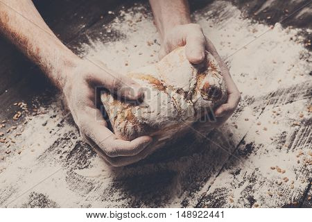 Warm fresh bread. Baking and cooking concept background. Hands of baker carefully hold loaf on rustic wooden table, sprinkled with flour. Stained dirty hands of cook. Soft toning