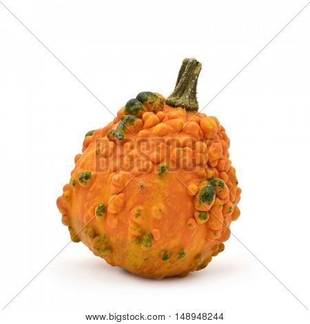 a warty pumpkin on a white background