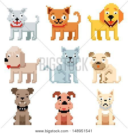 Pixel art pets icons. 8 bit dogs and cats vector. Pets cat and dog in pixel art, illustration breed pets