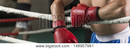 Male boxer with boxing gloves rests on the ropes in the ring