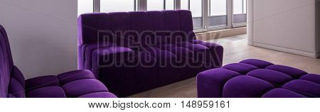 Violet Quilted Couches