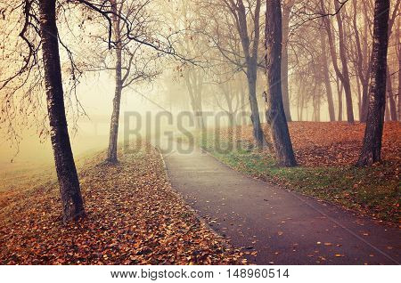 Autumn deserted alley -misty park autumn view. Autumn park alley in dense fog-foggy autumn landscape with bare autumn trees and dry fallen leaves. Autumn alley in dense autumn fog. Soft focus applied.