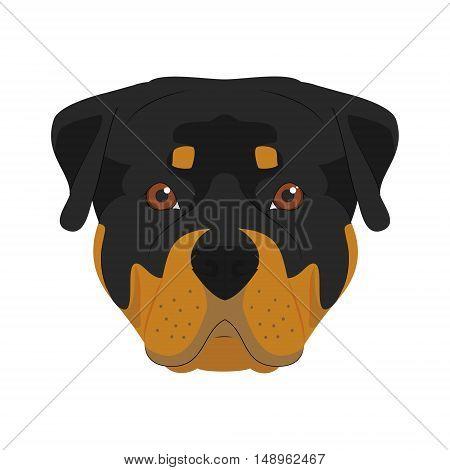 Rottweiler Dog Isolated On White Background Vector Illustration