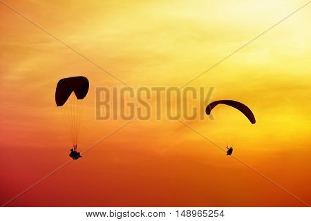 Two silhouettes of skydivers are flies on sunset and sea background