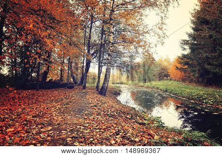 Autumn picturesque landscape in vintage colors-autumn trees and narrow forest river in cloudy weather.Autumn forest landscape-orange autumn trees and dry fallen autumn leaves. Vintage autumn landscape