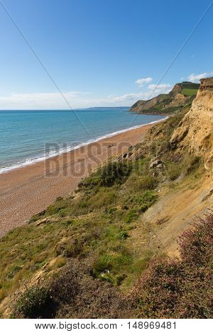 Eype coast Dorset England uk south of Bridport and near West Bay
