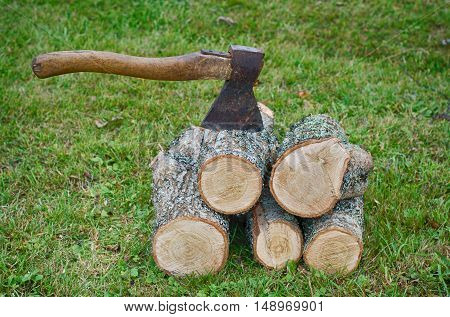 Chopping wood. Firewood for the winter. Autumn