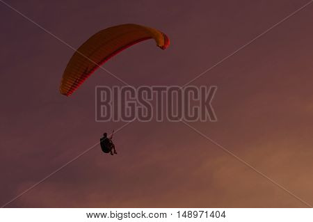 Skydiver flies on the background of sunset sky