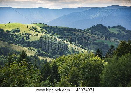 Mountain Landscape And Meadow Illuminated By The Sun